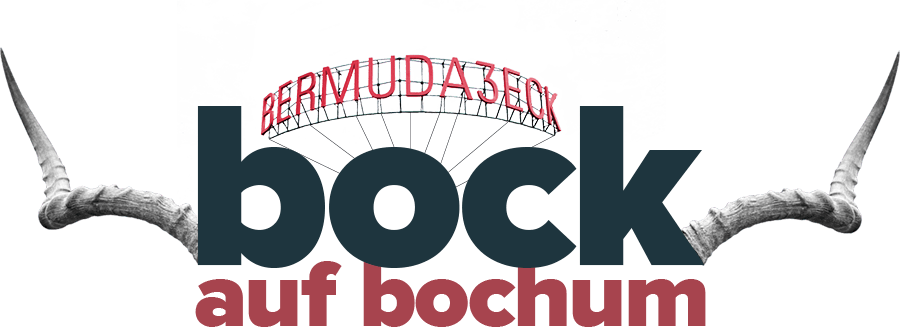 Bock auf Bochum Pitch Titel